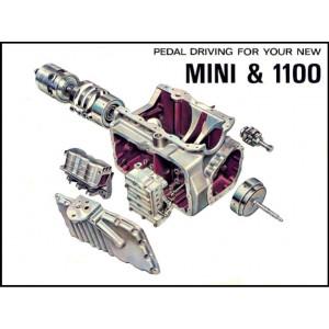 Boite de vitesse automatique MINI / occasion-Austin Mini